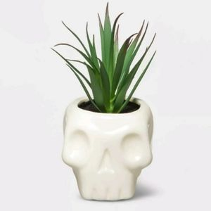 Halloween Skull with Faux Succulent White